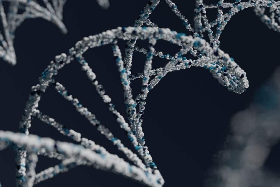 Genes Asociados a la fibromialgia